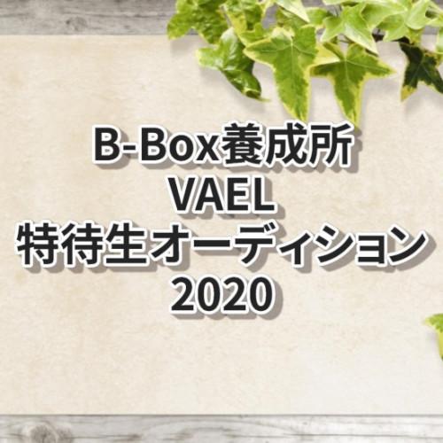 B-Box 養成所 VAEL 特待生オーディション2020
